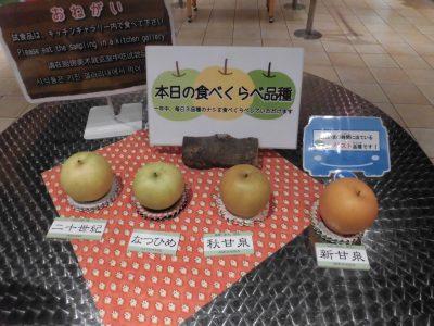 二十世紀梨記念館なしっこ館内の2018年10月13日の梨食べくらべ