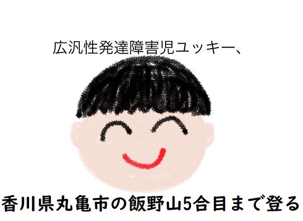 広汎性発達障害児ユッキー、香川県丸亀市の飯野山5合目まで登る